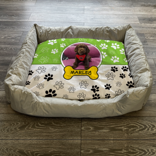 Personalised Dog Bed Paws & Bones Lime Green