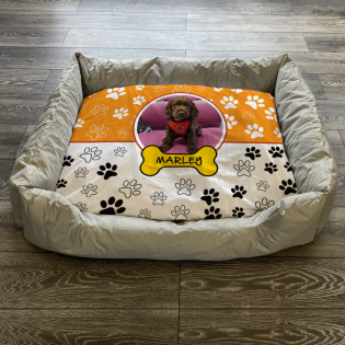 Personalised Dog Bed Paws & Bones Orange
