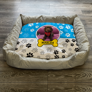 Personalised Dog Bed Paws & Bones Sky Blue
