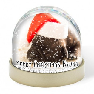 Snow Globe - Pets Christmas Photo